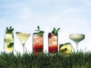 популярные летние коктейли