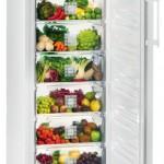 однокамерный холодильник без морозилки