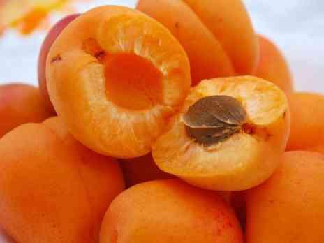 что можно приготовить из абрикосов