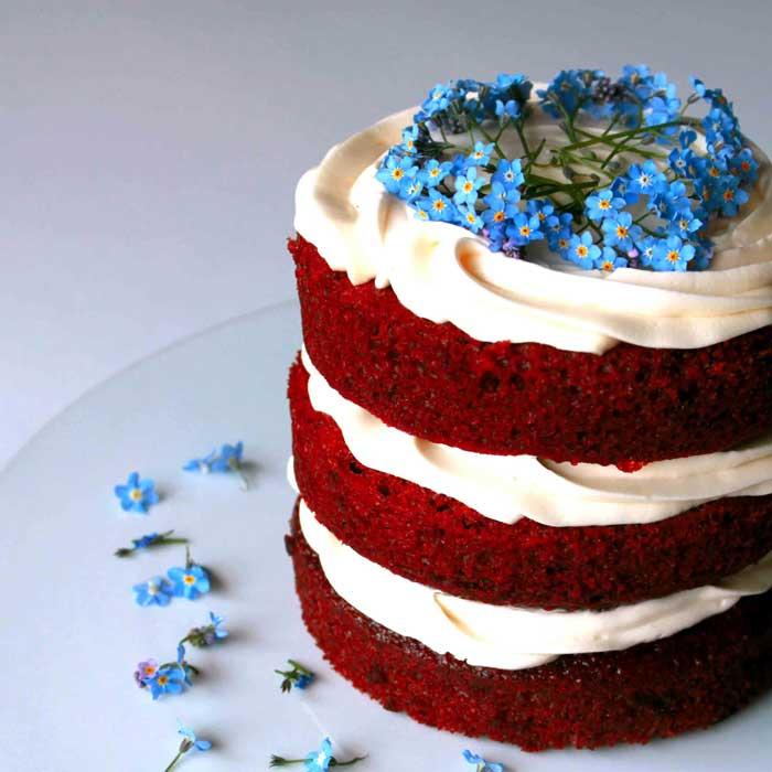 голый торт с цветами незабудки