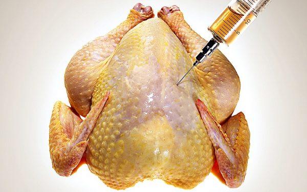 как гормоны попадают в курицу